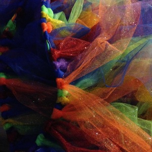 Glittery Color Run Tutu